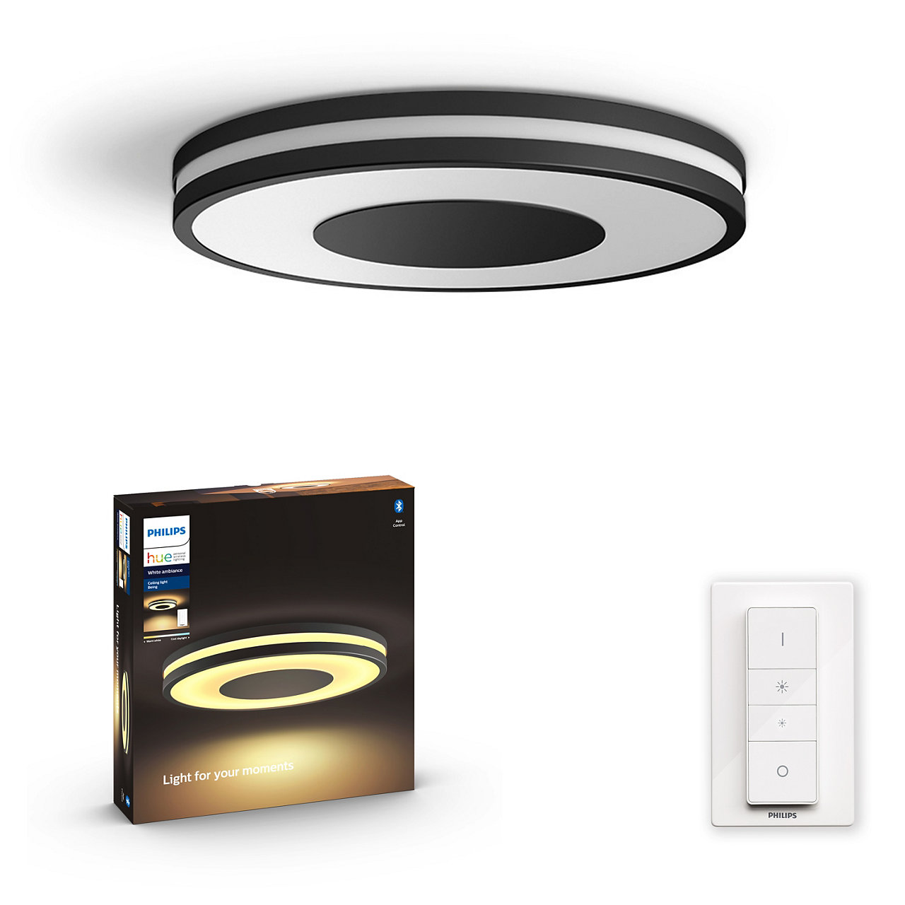 Hue Being Ceiling Light (Black)